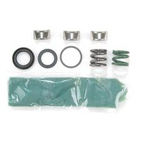 MOOG Driveline Products - 604 Double Cardan CV Ball Seat Repair Kit